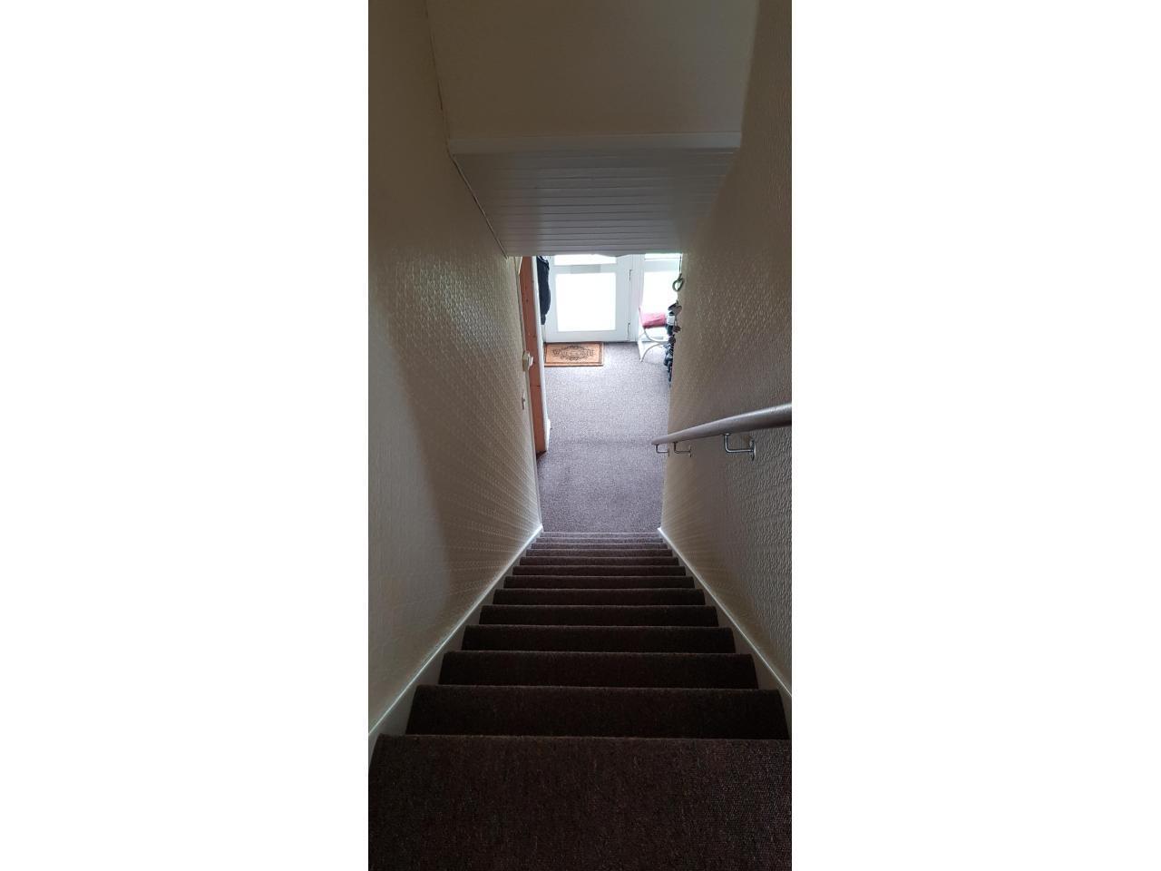 Сдаю комнату £400/m (double room) Hatfield - 1