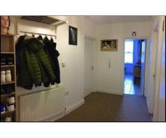 Double Bedroom для одного человека - Image 5