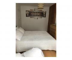 Сдается просторная, светлая double комната для одного. - Image 4