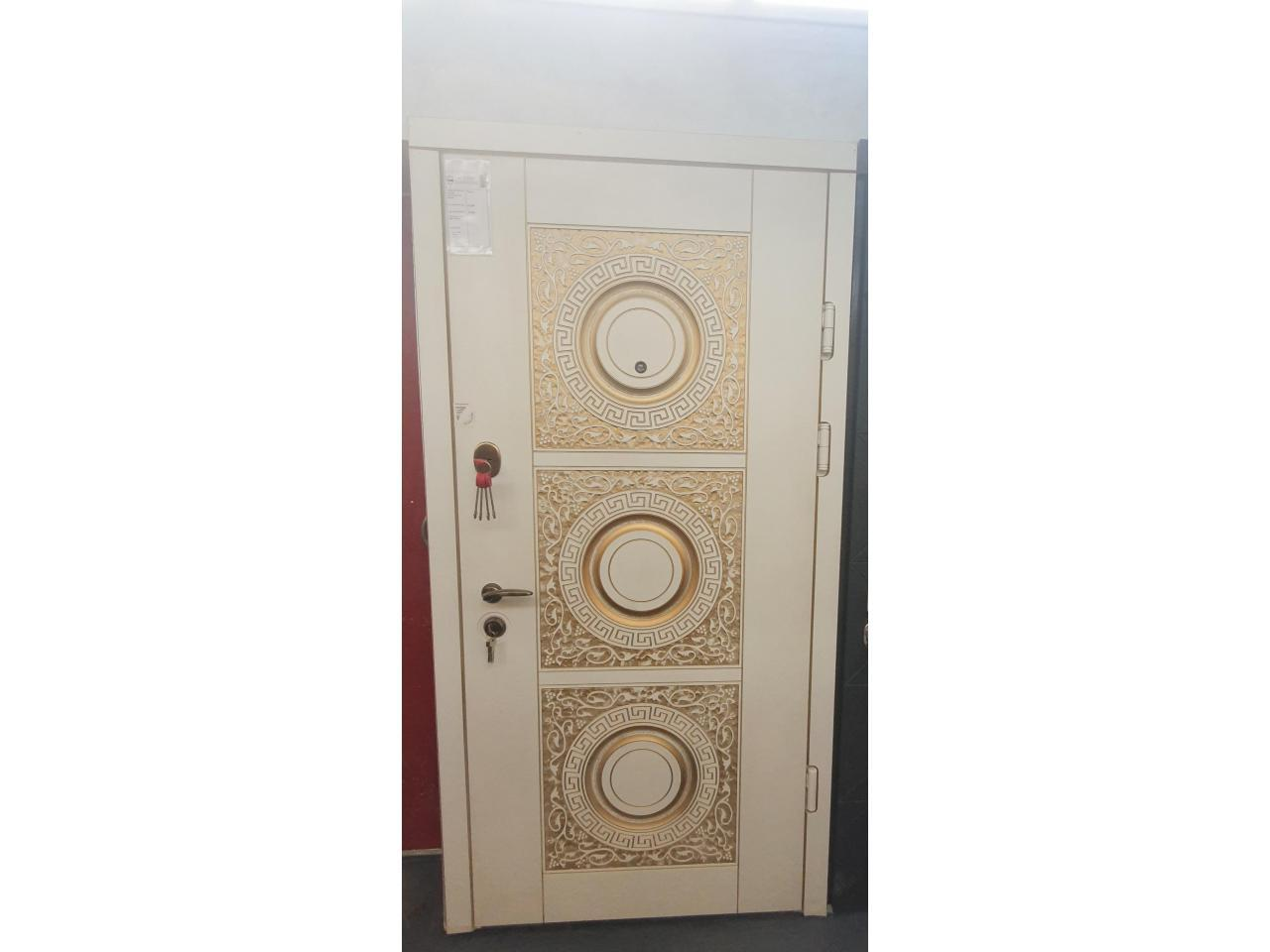 Security Doors - 1