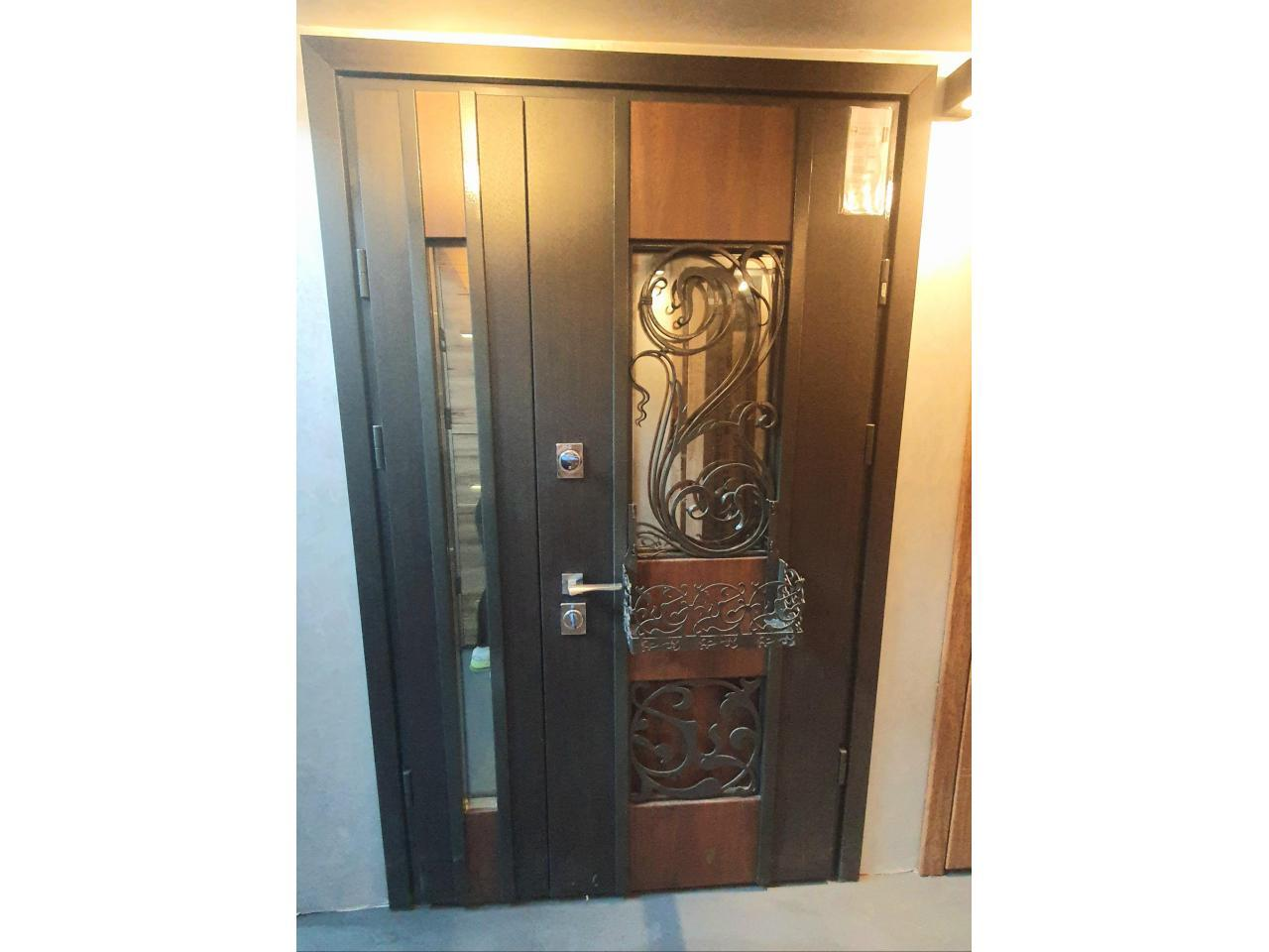 Security Doors - 2