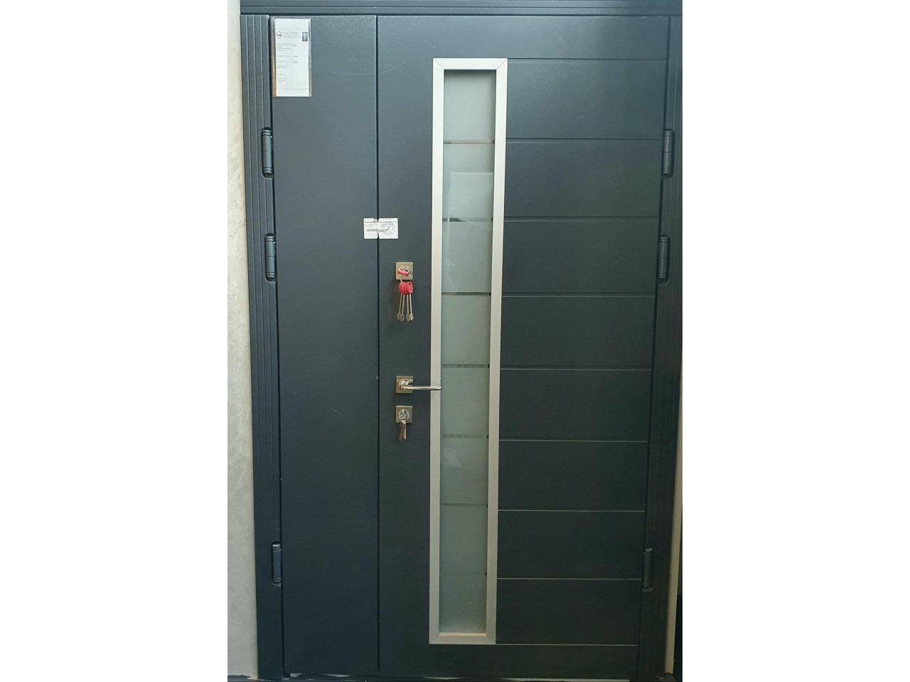 Security Doors - 3