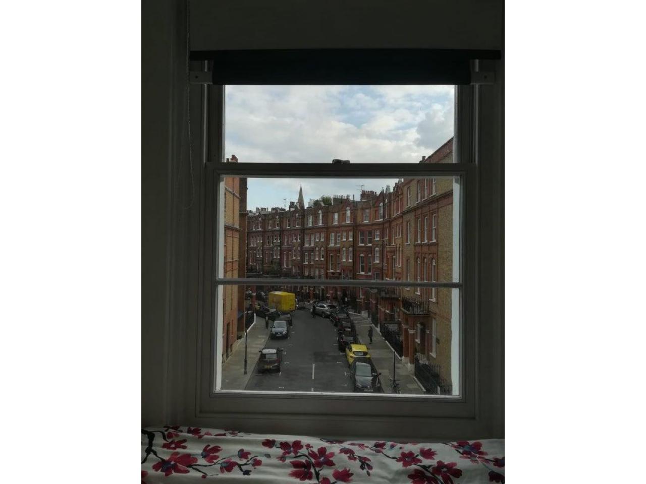 South Kensington single room - 3