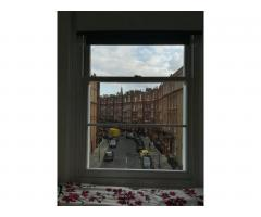 South Kensington single room - Image 3