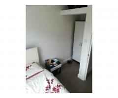 South Kensington single room - Image 4
