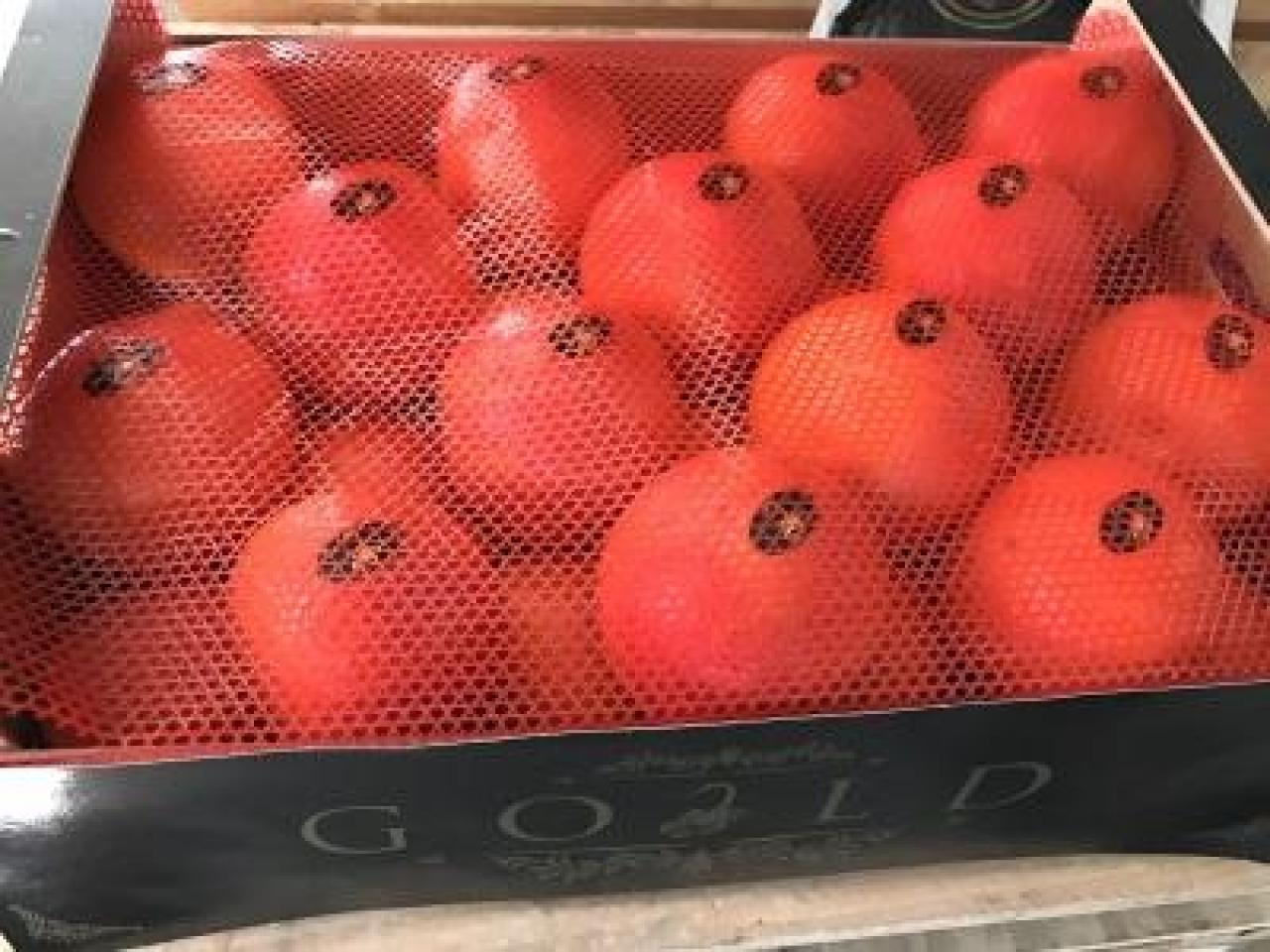 Продаем апельсины из Испании - 1