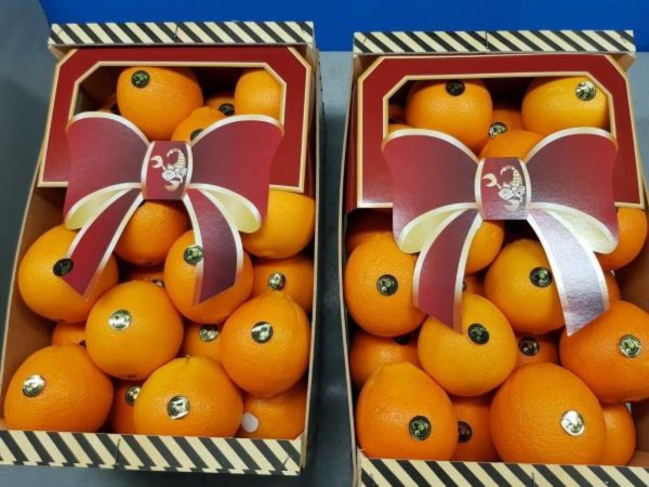 Продаем апельсины из Испании - 2