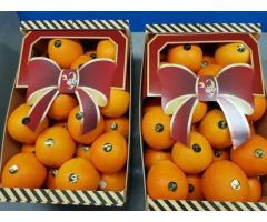 Продаем апельсины из Испании - Image 2