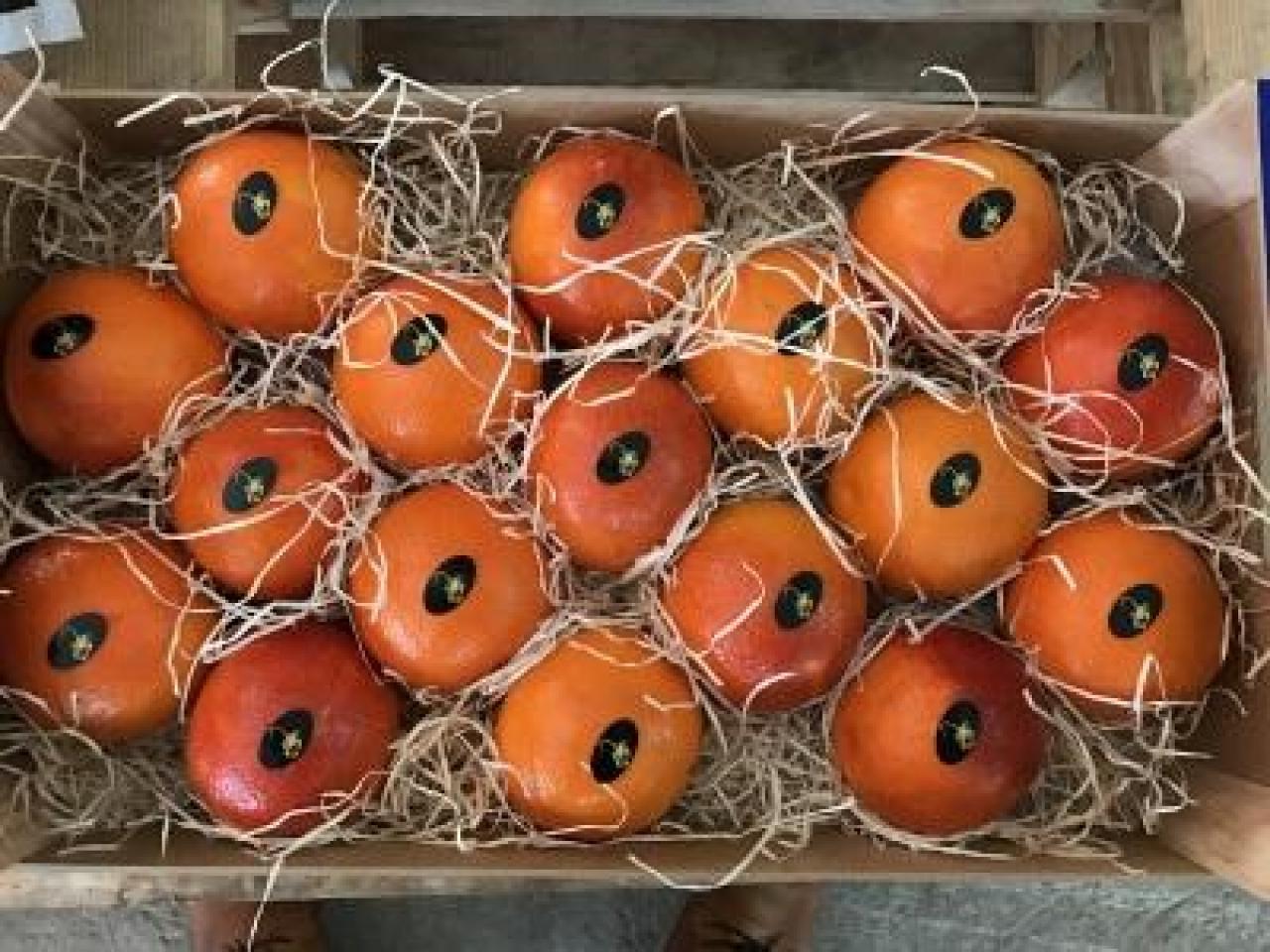 Продаем апельсины из Испании - 3