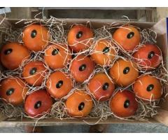 Продаем апельсины из Испании - Image 3