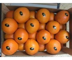 Продаем апельсины из Испании - Image 4