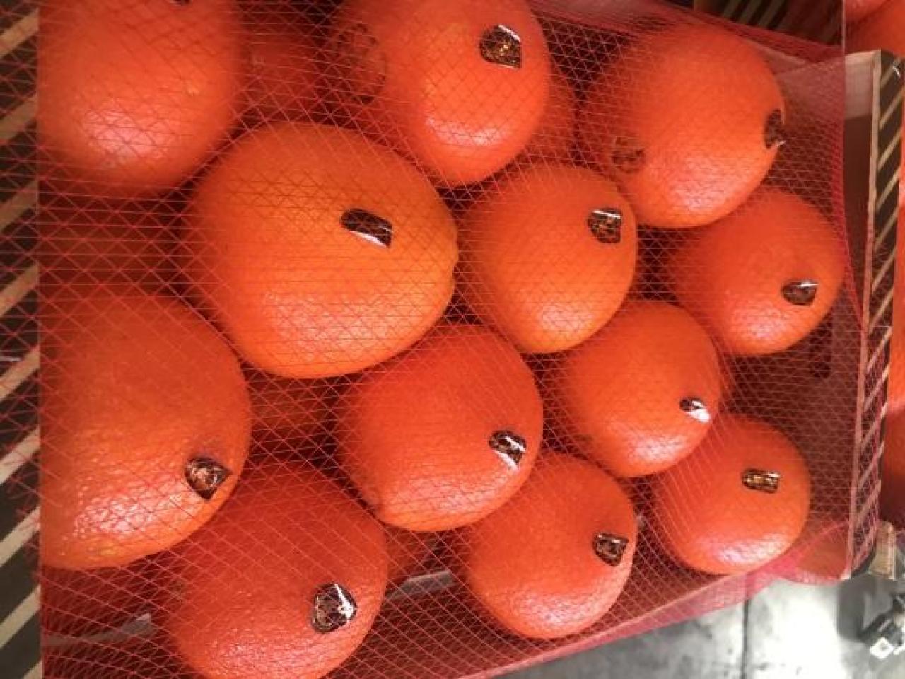 Продаем апельсины из Испании - 5