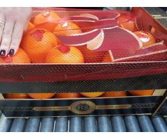 Продаем апельсины из Испании - Image 8