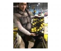 Продаем лимоны из Испании - Image 1