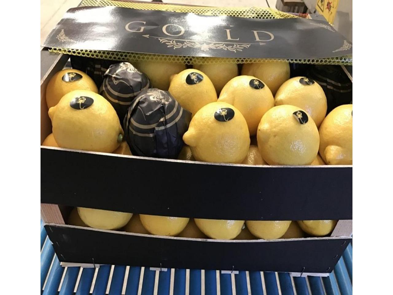 Продаем лимоны из Испании - 2