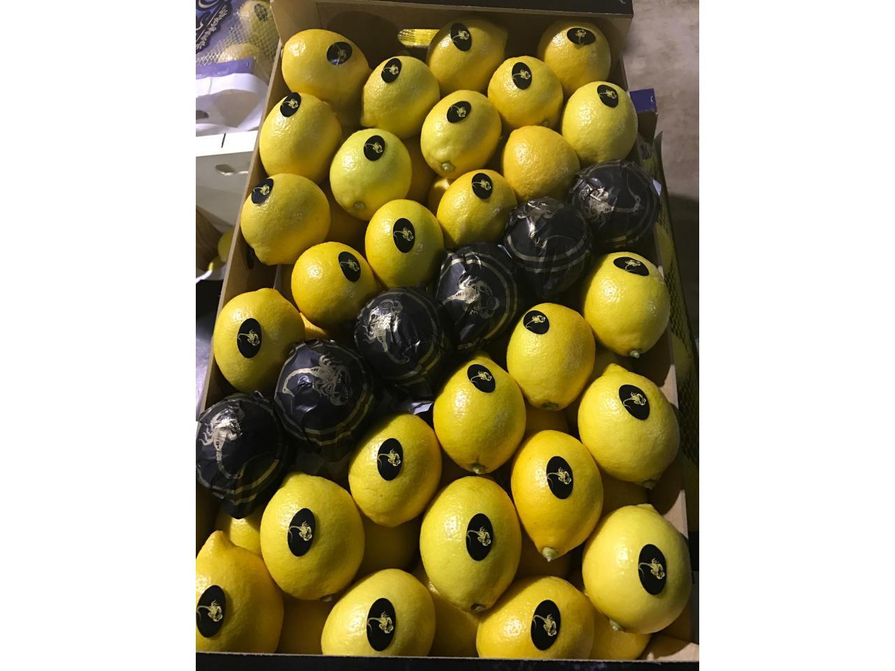 Продаем лимоны из Испании - 4