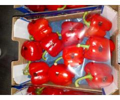 Продаем перец из Испании - Image 7