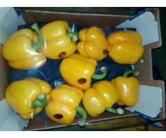 Продаем перец из Испании - Image 8