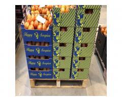 Продаем томаты из Испании - Image 1
