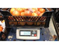 Продаем томаты из Испании - Image 4