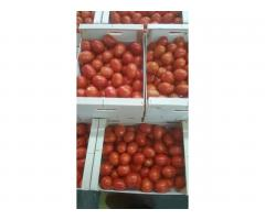 Продаем томаты из Испании - Image 6