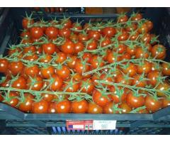 Продаем томаты из Испании - Image 7