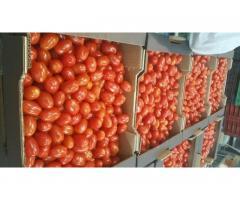 Продаем томаты из Испании - Image 8