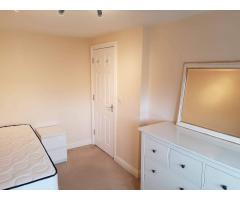 Double room Dagenham - Image 4