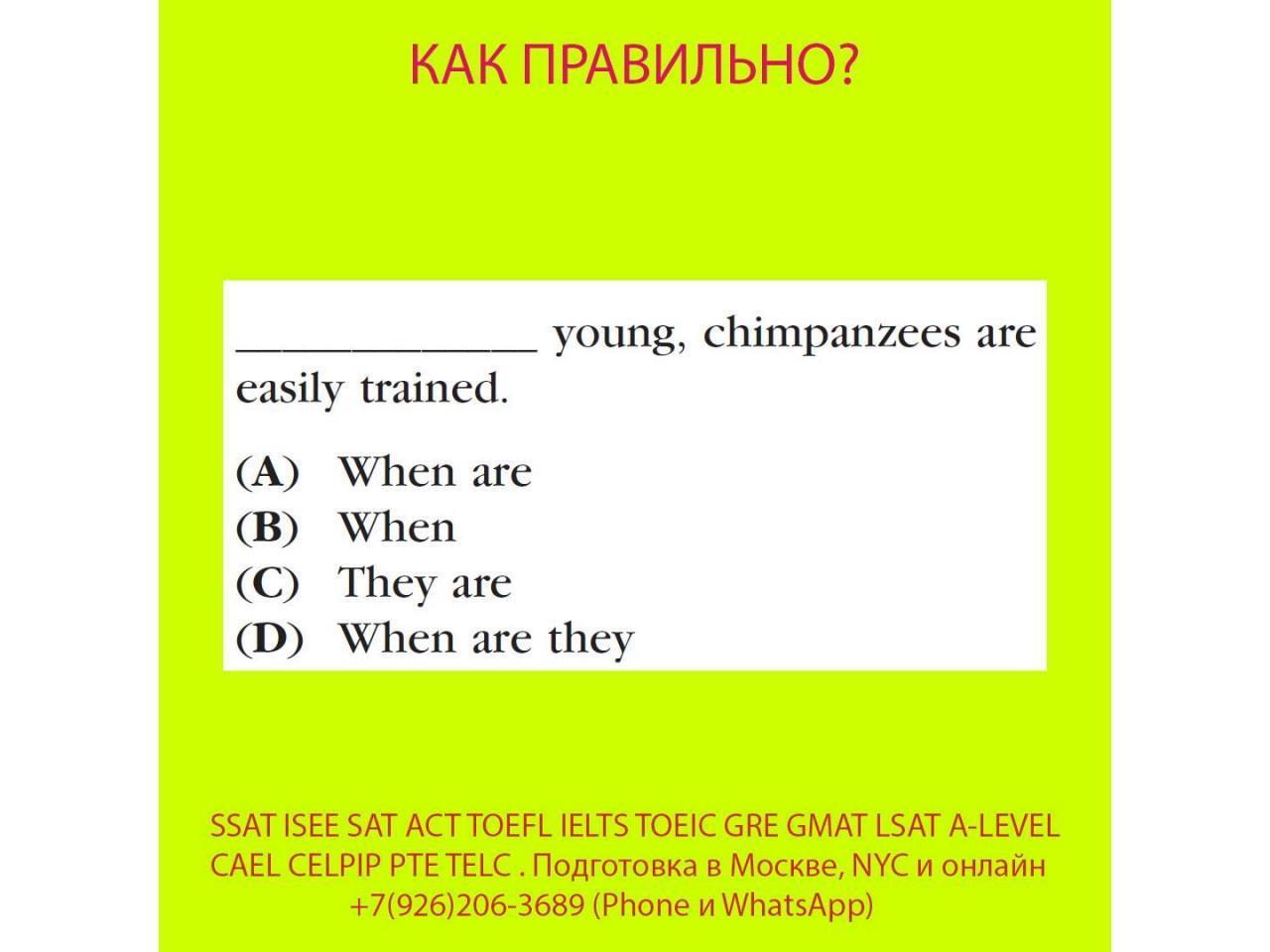 Курсы SSAT, ISEE, SAT, ACT, TOEFL, TOEIC преподаватель, репетитор из США - 3