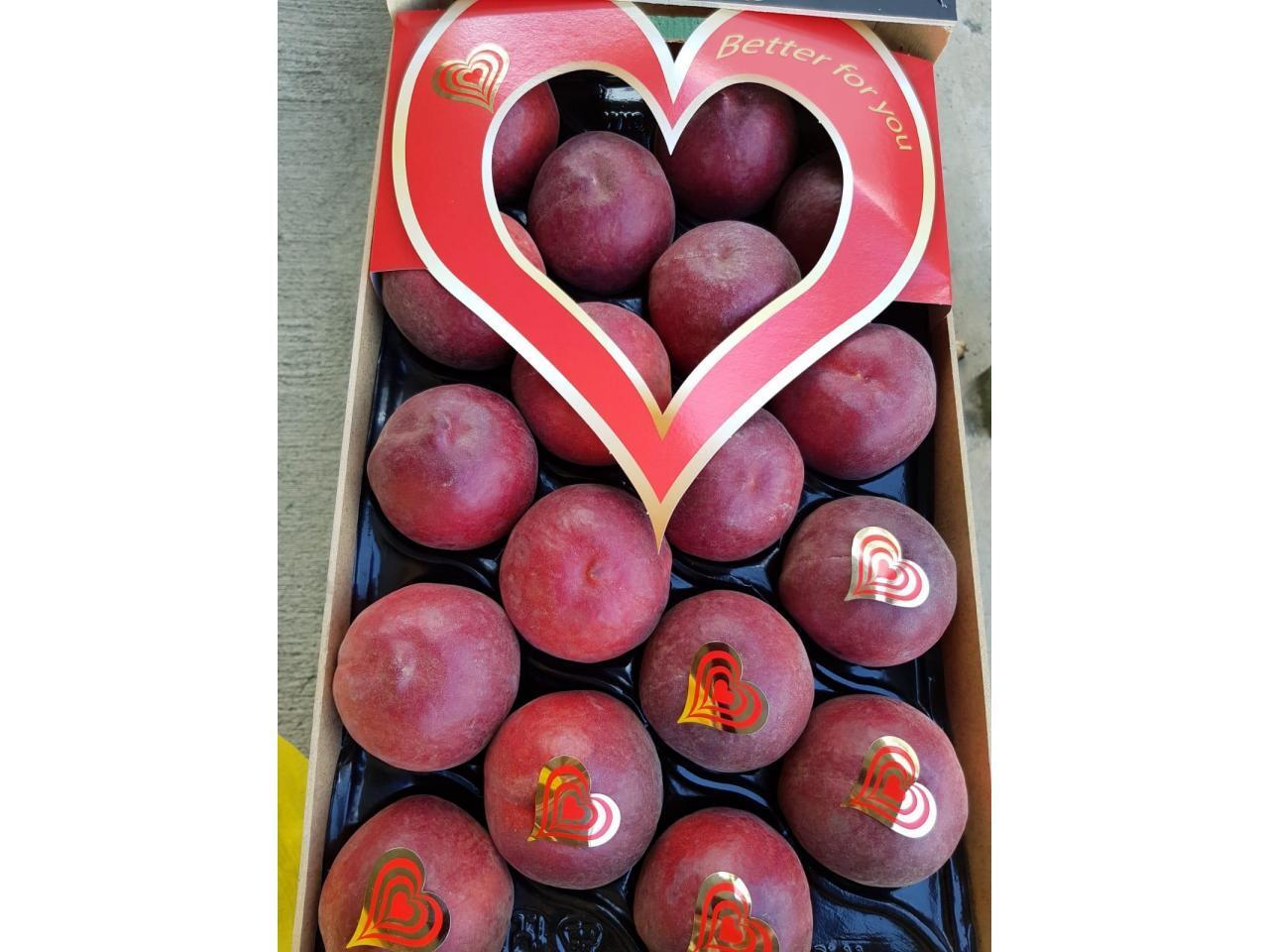 Продаем персики из Испании - 4