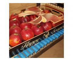 Продаем нектарин из Испании - Image 4