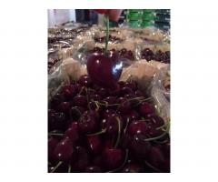 Продаем черешню из Испании - Image 9