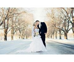 Photographer & Videographer - Image 6
