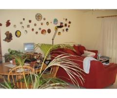 Real estate in Tenerife for sale » #369 - Image 1