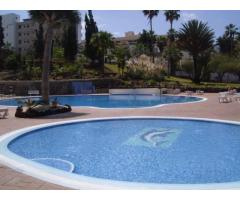 Real estate in Tenerife for rent - Image 4
