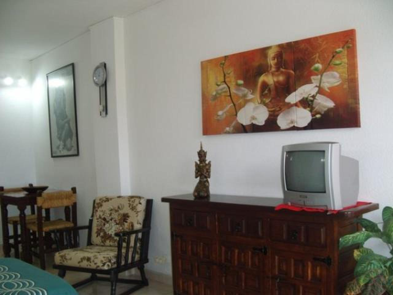 Real estate in Tenerife for rent - 5