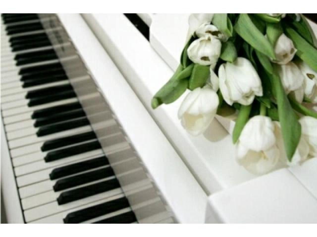 Уроки сольфеджио, теории музыки, гармонии по Skype! - 1