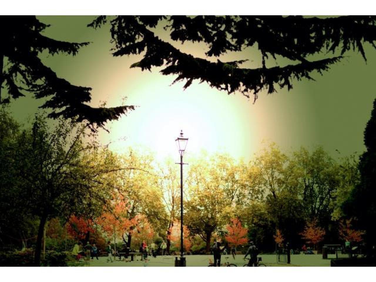 Фотограф в Лондоне. - 2
