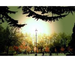 Фотограф в Лондоне.