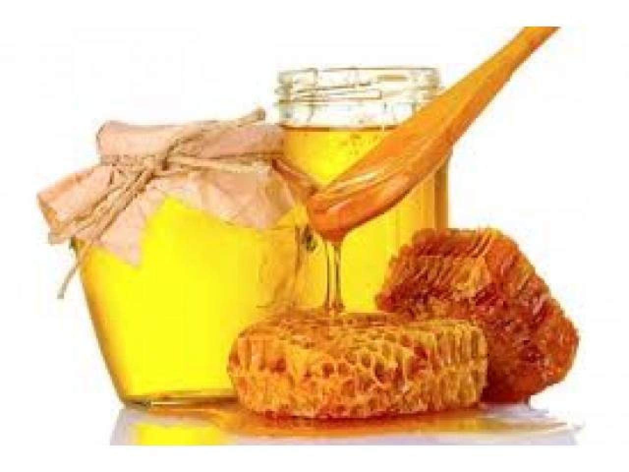 Мед с Украины (опт 20т в неделю) - 1