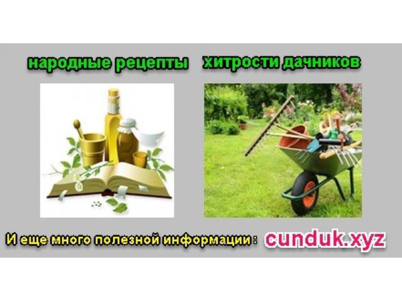 Сундук, информационный ларец-народные рецепты и хитрости мудрых дачников. - 1