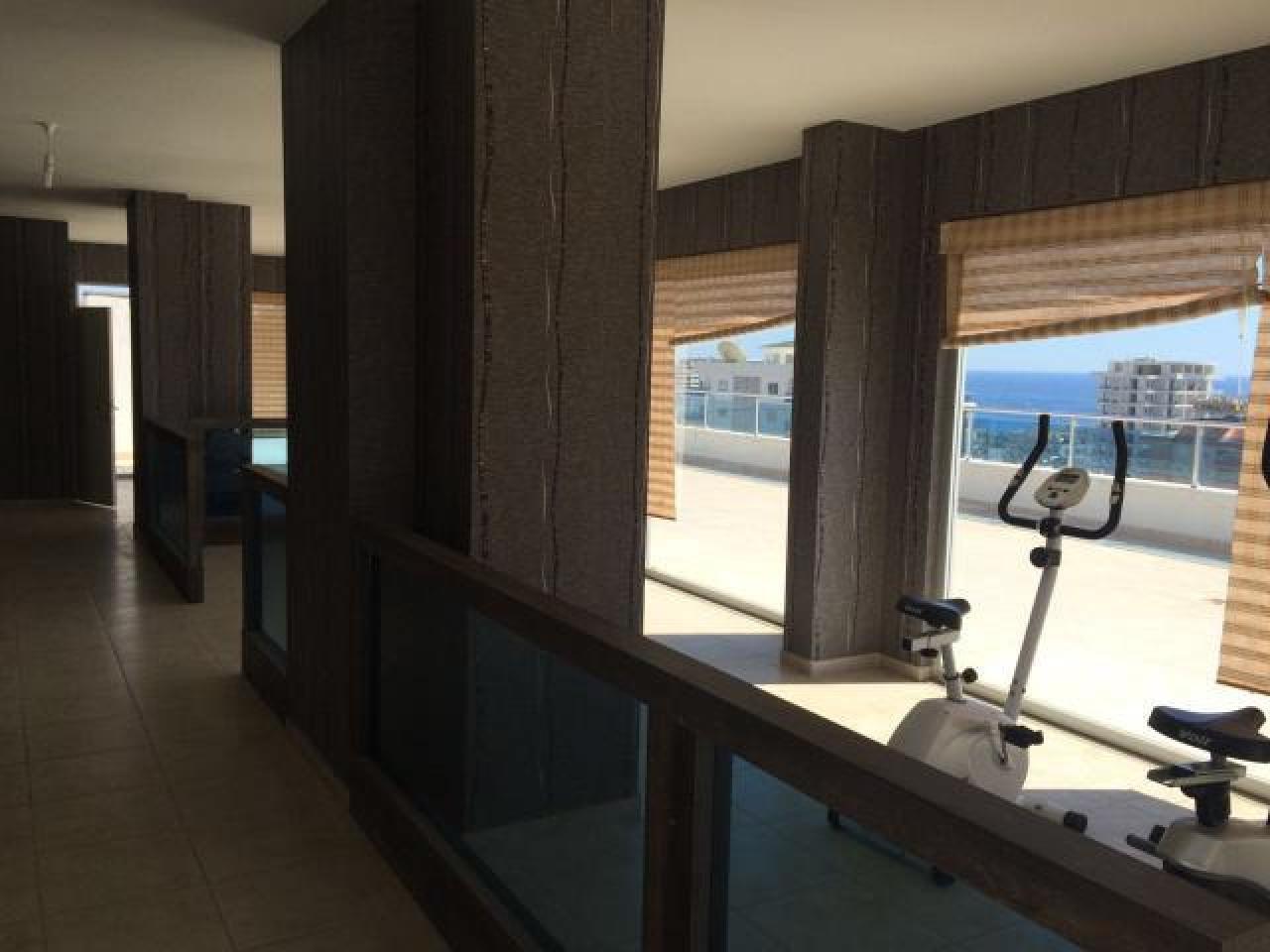 новая квартира-студия - 8