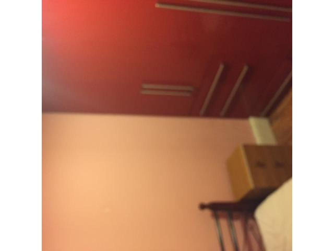 Cдаю single комнатy хорошем доме в PLAISTOW и REDBRIDGE station - 5