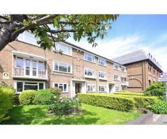 Сдается уютная single  комната в квартире в красивом и спокойном районе на Putney SW15 6AG. - Image 3