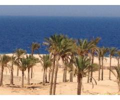 Недвижимость на берегу Красного моря, Хургада, Египет - Image 5