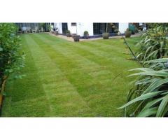 Работы в вашем саду - Image 3