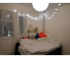 Double room dlya devushki - Image 2