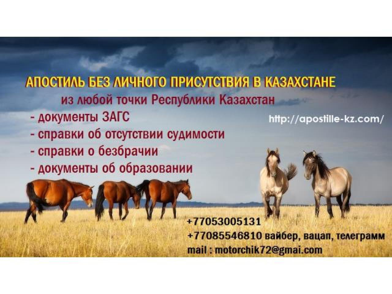 Свидетельство о рождении дистанционно из Казахстана - 1