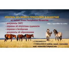 Свидетельство о рождении дистанционно из Казахстана