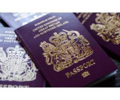Иммиграционный сервис, визы, статус резидента для граждан ЕС, гражданство UK - Image 2